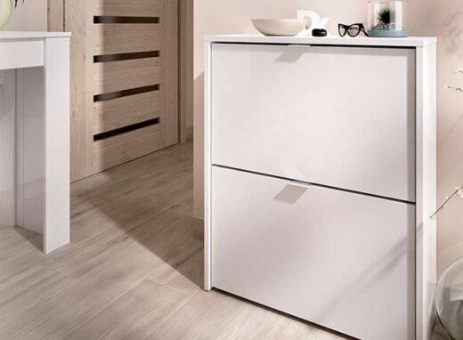 mueble-zapatero-dos-puertas-blanco-006dek4303201